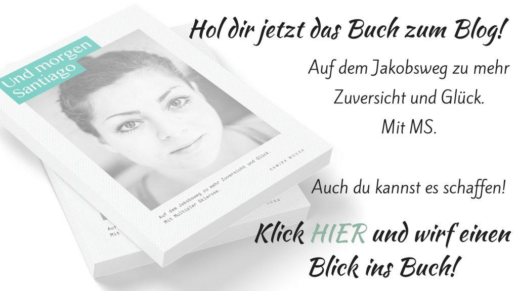 MS Buch